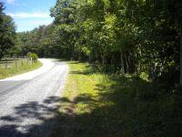 Home for sale: Lot 2 Higginbotham Creek Rd., Amherst, VA 24521