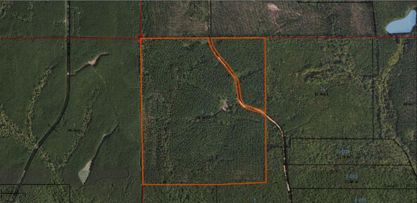 132 +/- Acres County Rd. 178, Five Points, AL 36855 Photo 9