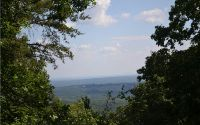 Home for sale: #17 Mount Sequoyah Rd., Jasper, GA 30143