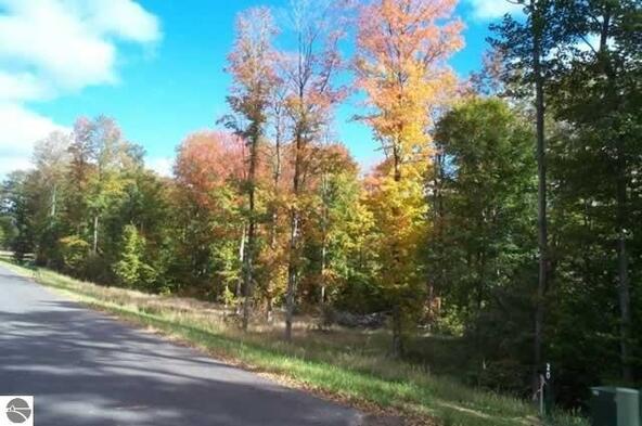004 Heather Ridge Trail, Beulah, MI 49617 Photo 4