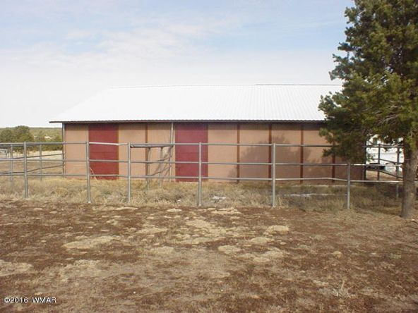 481 Apache County Rd. 3144, Vernon, AZ 85940 Photo 25