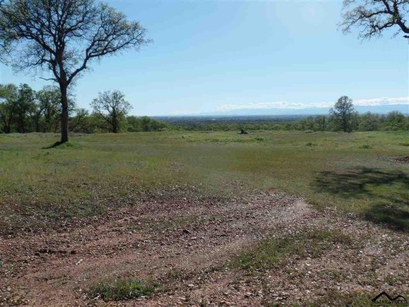 4.21 Ac Norbus Rd., Red Bluff, CA 96080 Photo 9