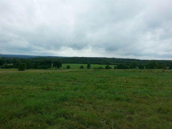 17001 N. Hwy. 7, Lead Hill, AR 72644 Photo 13