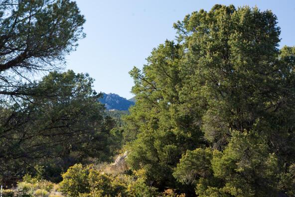 17955 W. Buckhorn Dr., Peeples Valley, AZ 86332 Photo 4
