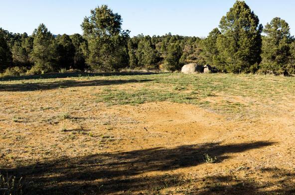 17955 W. Buckhorn Dr., Peeples Valley, AZ 86332 Photo 36
