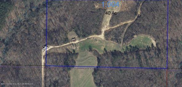 County Hwy. 12, Hackleburg, AL 35564 Photo 4