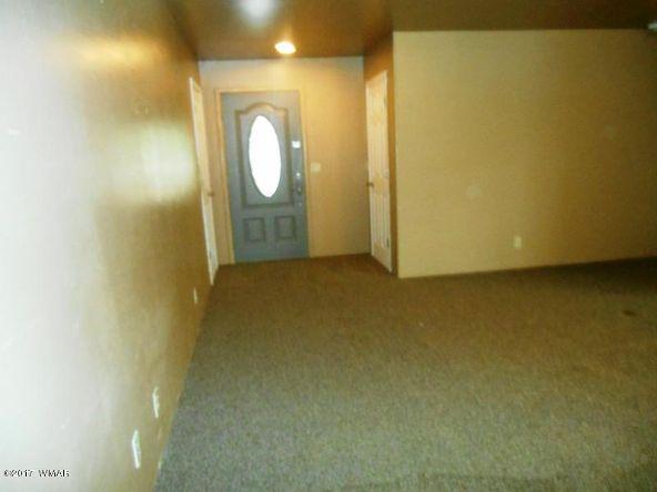 2131 Cottontail Rd., Overgaard, AZ 85933 Photo 29