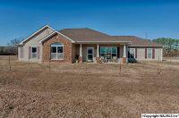 Home for sale: 314 Neel School Rd., Danville, AL 35619