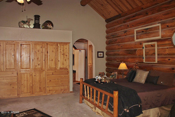 38721 State Route 373, Greer, AZ 85927 Photo 31