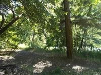 Home for sale: 70400 North Hwy. 101 None, Leggett, CA 95585