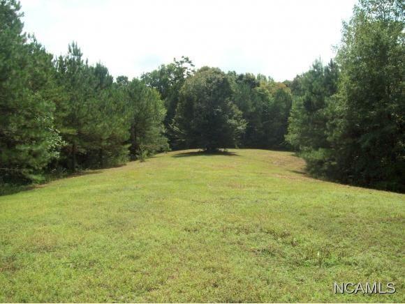 477 Co Rd. 1731, Holly Pond, AL 35083 Photo 18