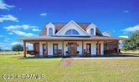 Home for sale: 3530 Opelousas, Ville Platte, LA 70586