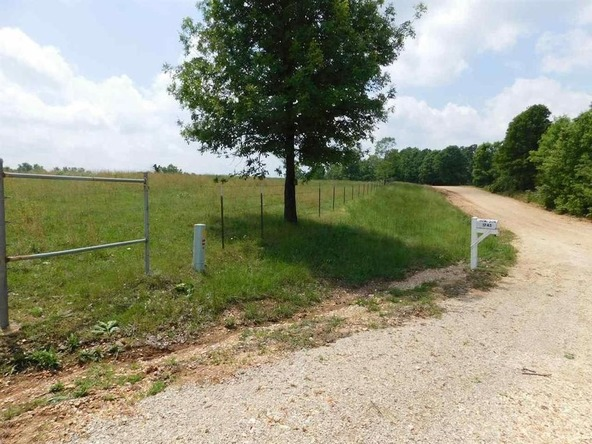 1745 French Town Rd., Camp, AR 72520 Photo 7
