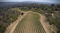 Home for sale: Foothill Rd., Ojai, CA 93023