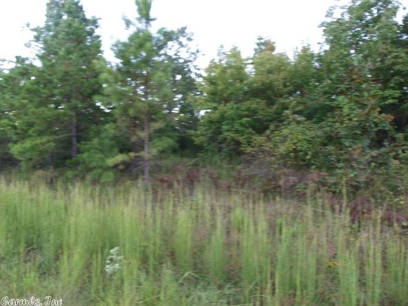 2011 Berry Mountain Cove, Paron, AR 72202 Photo 3