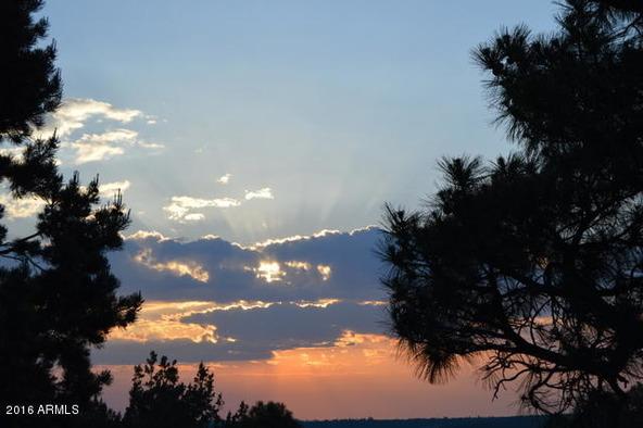 6921 Oak Hill Dr., Show Low, AZ 85901 Photo 9