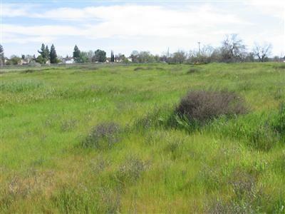 3325 W. Clinton Avenue, Fresno, CA 93722 Photo 4