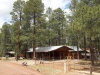 Home for sale: 2178 N. Woods Dr., Overgaard, AZ 85933