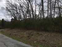 Home for sale: Lot 27 Virgin Bluff Dr., Galena, MO 65656