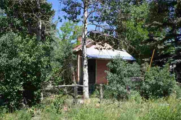 501 Pine, Chama, NM 87520 Photo 13