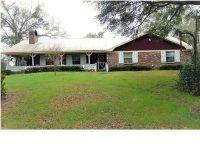 Home for sale: 11655 Hwy. 45, Chunchula, AL 36521