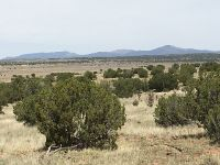 Home for sale: 260 Ranch House Rd., Ancho, NM 88301