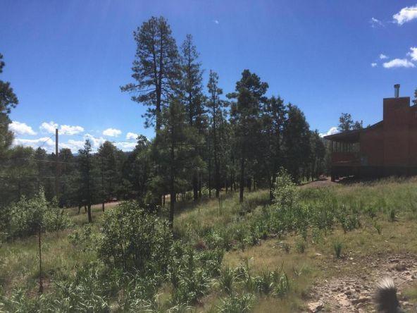 22 Cr 2074, Alpine, AZ 85920 Photo 4