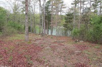 Home for sale: Lot 10 Brittany Cove Ln., Greers Ferry, AR 72067