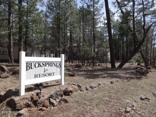 6126 Buck Springs Rd., Pinetop, AZ 85935 Photo 131