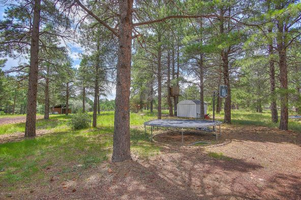 225 S. Beech Dr., Flagstaff, AZ 86004 Photo 22