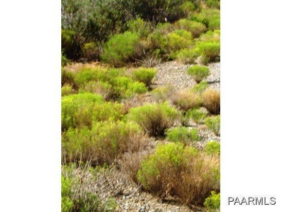 12991 E. Oak Hills Trail, Mayer, AZ 86333 Photo 12