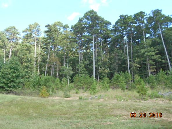 473 Polk Rd. 675, Mena, AR 71953 Photo 30