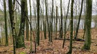 Home for sale: Lot 1 Crystal Point Rd., Birchwood, WI 54817