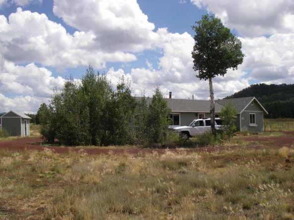 3460 E. Mountain Man Trail, Williams, AZ 86046 Photo 15