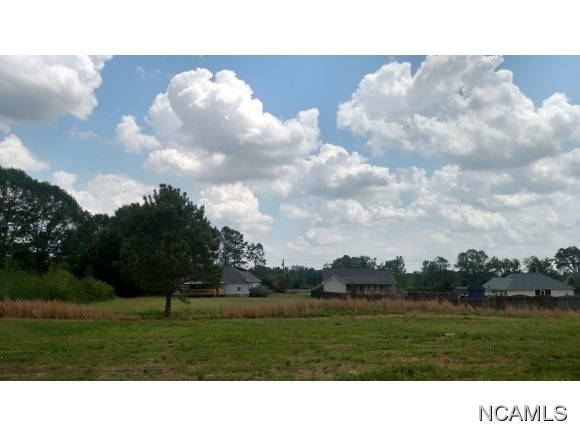 370 Co Rd. 1332, Vinemont, AL 35179 Photo 3