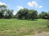 Home for sale: 201 Mesquite Meadows, La Joya, TX 78560