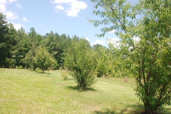 4534 Us Hwy. 31, Castleberry, AL 36432 Photo 17