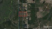 Home for sale: 19.67 Ac Bill Lundy Rd., Laurel Hill, FL 32567