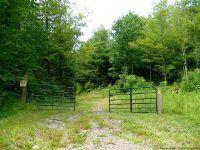 Home for sale: 457 Swart Rd., Margaretville, NY 12455