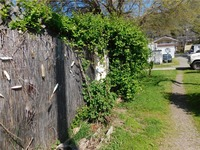 Home for sale: Harbor Dr., Glenhaven, CA 95443