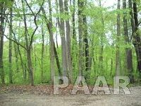 Home for sale: 1507 Shoreline Dr., Varna, IL 61375