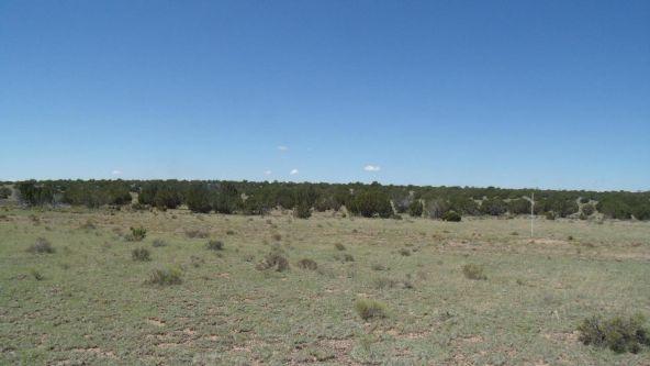 11116 S. State Route 64, Williams, AZ 86046 Photo 4
