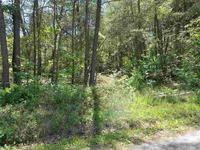 Home for sale: Loftis Hill Rd., Englewood, TN 37329