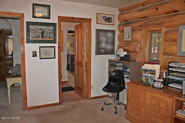 38721 State Route 373, Greer, AZ 85927 Photo 21