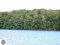 Home for sale: 000 Green Briar Rd., Lake Ann, MI 49650