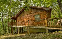Home for sale: 1350 Cherry Lake Dr., Cherry Log, GA 30522