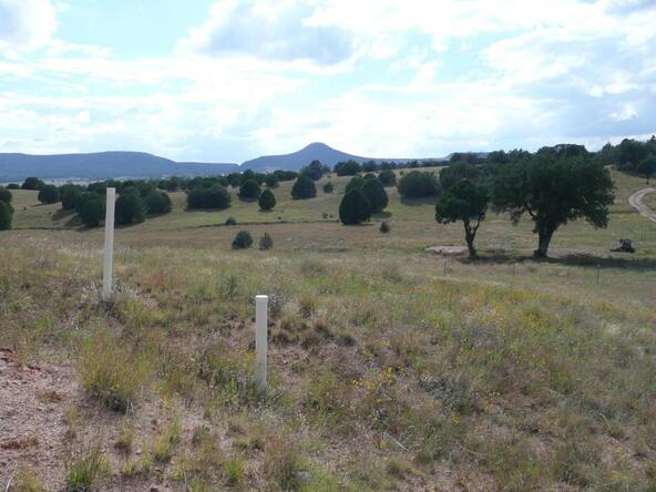290 N. Navajo Trail, Young, AZ 85554 Photo 20
