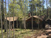 Home for sale: Acr 1323, Greer, AZ 85927