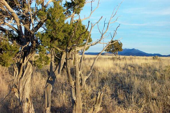 6218 S. Prairie Grass Ln., Williams, AZ 86046 Photo 6