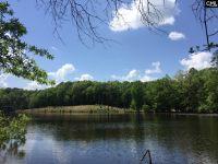 Home for sale: 169 Tortoise Trail, Batesburg, SC 29006